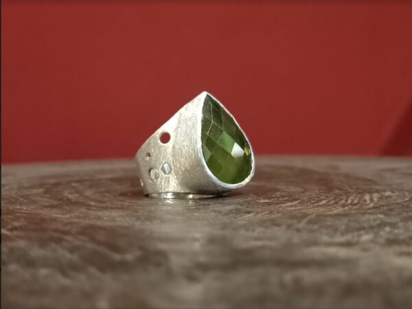 Brushed silver and vassonite ring.