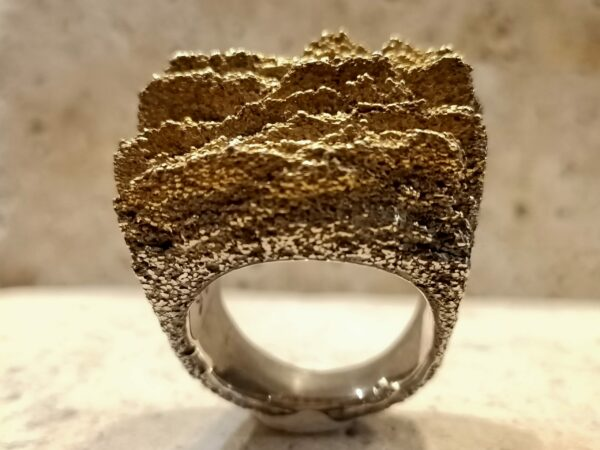 Picture showing a sterling silver ring with gilding.