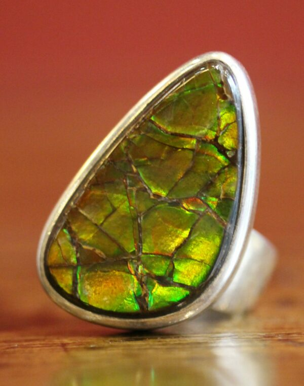 Fossilized ammonite mother-of-pearl and sterling silver ring.